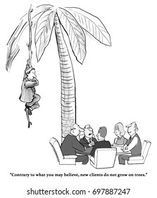 Business or legal cartoon about a leader saying that new clients do not grow on trees, yet there is a client on a tree nearby.