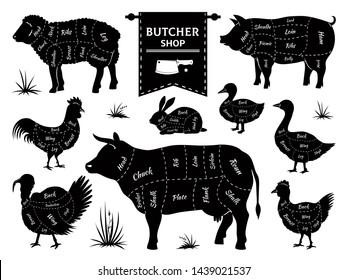 pig parts images stock photos  vectors  shutterstock