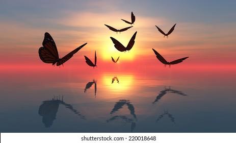 Butterflies flying towards the sun