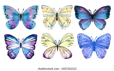 Butterflies painted by hand in watercolor. Gentle and bright. Moths and hawk moths. Watercolor set