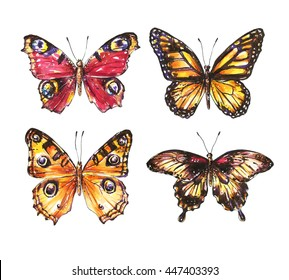 Butterflies, watercolor set, isolated on white background