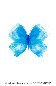 butterfly blue butterfly watercolor art painting illustration beautiful watercolor butterfly,butterfly isolated,butterfly,turquoise,animal,background,beautiful,biology,blue,celebration,drawing,dream