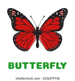 Butterfly Danaus plexippus flashcard. llustration for kids education and child reading skills development. Sight Words Flash Cards For children to learn read and spell.