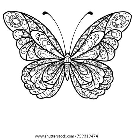 Butterfly Drawing Mandala Design Coloring Stock
