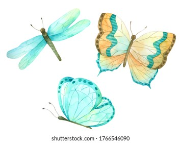 Butterfly set hand paint watercolour isolated on white background