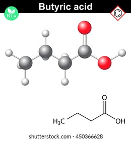 Butyric acid molecule, 2d and 3d illustration of molecular structure, isolated on white background, raster