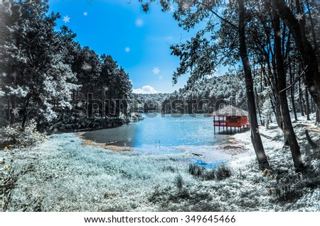Cabin Woods Nearby Lake Christmas Amazing Stock Illustration