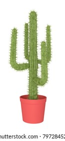 Cactus on a white background, 3D illustration