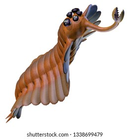 Cambrian Opabinia  - Opabinia was a carnivorous marine fish that lived in the seas of the Cambrian Period.