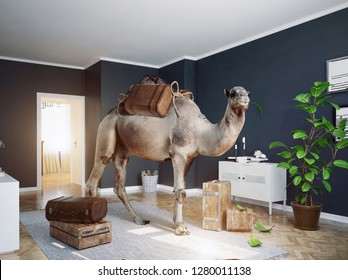 the camel in the room. Photo and 3d   combination concept idea