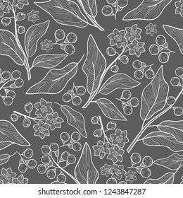 Camphor. Plant. Leaves, fruit. Wallpaper, seamless. Sketch. Gray background, white drawing.