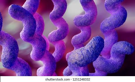 campylobacter 3d illustration