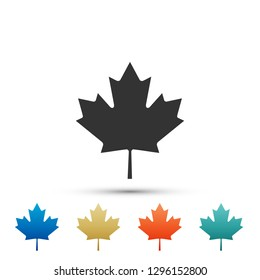 Canadian maple leaf icon isolated on white background. Canada symbol maple leaf. Set elements in colored icons. Flat design