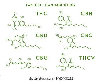 Cannabinoid structure. Cannabidiol molecular structures, THC and CBD formula. Marijuana or cannabis molecules, cannabidiol biochemistry medicinal structuring  illustration