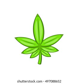 Cannabis leaf icon in cartoon style isolated on white background  illustration