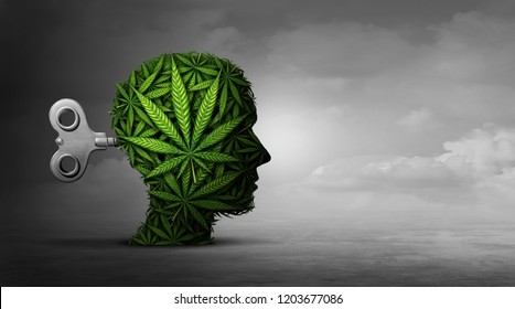 Cannabis and mental function with the use of marijuana as a psychiatric or psychiatry concept with 3D illustration elements.