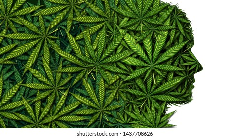 Cannabis and weed or marijuana brain as a head symbol concept as a face made of leaves as a pot or herbal psychoactive medicine patient and effects on psychology concept in a 3D illustration style.