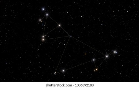 Capricorn constellation in the starry space.