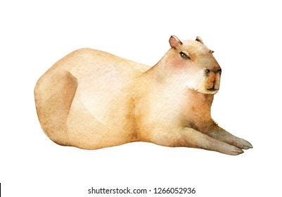 Capybara Cartoon Images Stock Photos Vectors Shutterstock