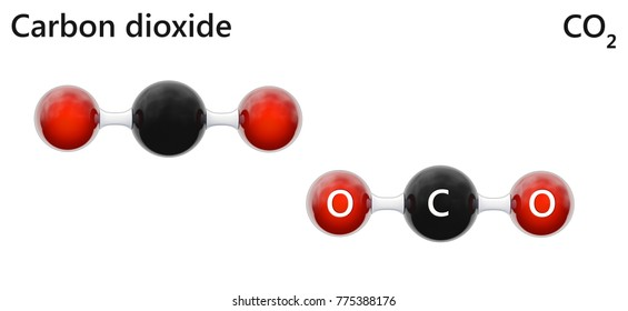 Carbon dioxide (formula CO2) is a colorless, odorless gas that can be formed by the body and is necessary for the respiration cycle of plants and animals. Isolated on white background. 3D illustration