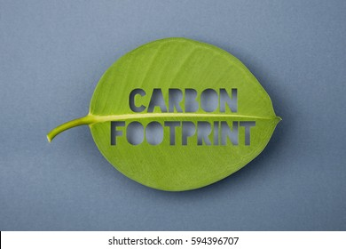 Carbon footprint eco message cut out of a green leaf. Environmental concept