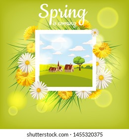 Card, farm, cow. Landscape countryside, spring flowers, dandelions, chamomiles, cartoon style, isolated, , illustration