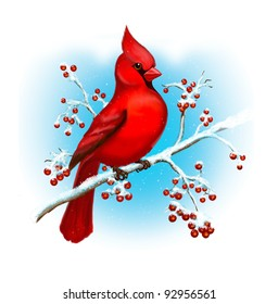 Cardinal Bird Winter Art