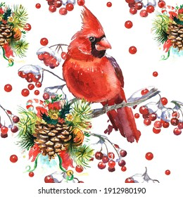 Cardinal birds and Fir branch with a cone. Set of elements for design Isolated on white background. Realistic sketch drawing. Watercolor illustration.