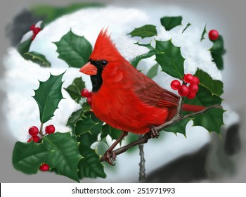 cardinal in snow images stock photos vectors shutterstock