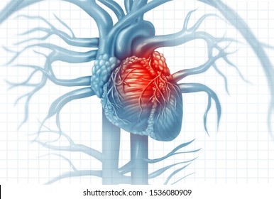 Cardiovascular disease human heart attack pain as an anatomy medical disease concept with a person suffering from a cardiac illness as a painful coronary event with 3D illustration style elements.