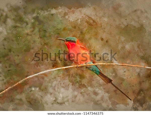 Carmine bee eater on branch,digital watercolor style painting