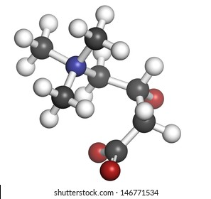 Carnitine food supplement molecule, chemical structure. Atoms are represented as spheres with conventional color coding: hydrogen (white), carbon (grey), oxygen (red), nitrogen (blue).