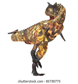 Carnotaurus 02 - The Carnotaurus dinosaur was a large carnivore in the Cretaceous Period of Earths history. Its fossils have been found in South America.