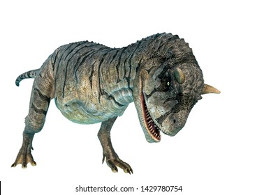 carnotaurus sastrei charging in a white background. This carnotaurus sastrei in clipping path is very useful for graphic design creations, 3d illustration