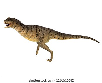 Carnotaurus sastrei Dinosaur Side Profile 3D illustration - Carnotaurus was a carnivorous theropod dinosaur that lived in Patagonia, Argentina during the Cretaceous Period.