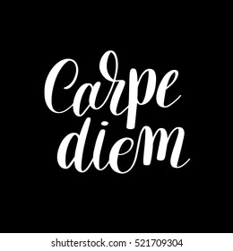 Carpe diem hand written lettering positive quote inspirational latin phrase to printable wall art, positive poster, home decoration, greeting card, calligraphy raster version illustration