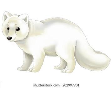 Easy Arctic Fox Sketch