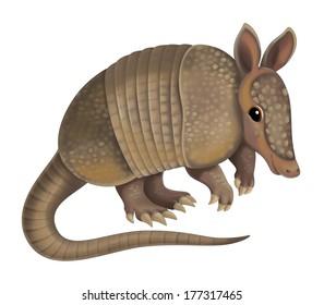 Cartoon animal - armadillo - illustration for the children