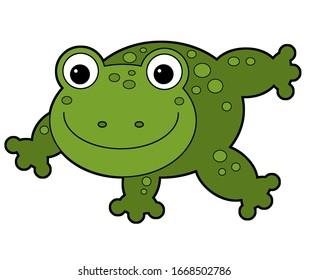 Cartoon animal frog toad on white background illustration for children