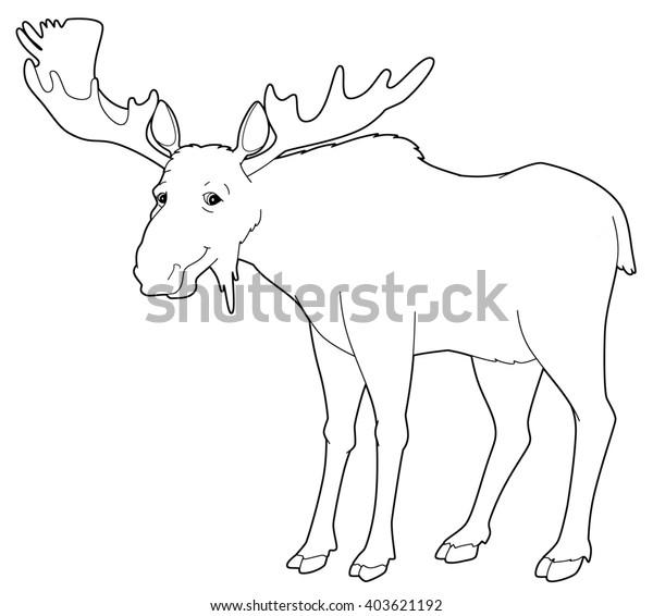 moose cartoon coloring page - Stock Illustration [58967365] - PIXTA | 566x600