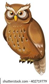 Cartoon animal - owl - isolated - illustration for children
