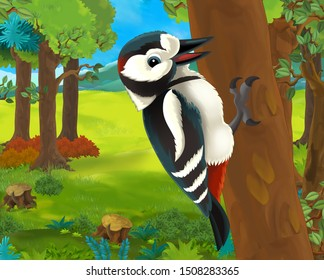 Cartoon animal scene with woodpecker - illustration for children