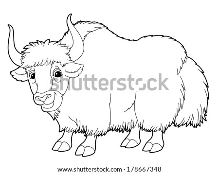 Cartoon Animal Yak Coloring Page Illustration Stock