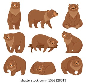Cartoon brown bear. Grizzly bears, wild nature forest predator animals and sitting bear. Fur brown predator, wildlife bears mammal. Isolated  illustration icons set