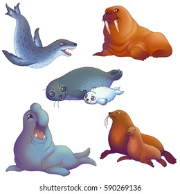 Cartoon colorful pinnipedes: Leopard seal, Walrus, Ringed seal with pup, Elephant seal and Steller sea lion (male and female).
