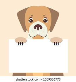 Cartoon dog character holding banner with message on white board sample text in pawns flat raster. lovely purebred pet illustration for shop or veterinary clinic ad