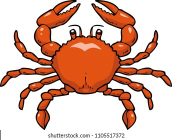 Cartoon doodle crab on a white background illustration