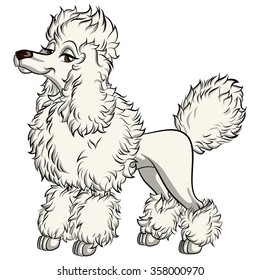 CARTOON FRENCH POODLE
