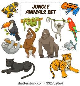 Cartoon funny jungle animals colorful set raster illustration