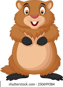 Marmotte Dessin High Res Stock Images Shutterstock